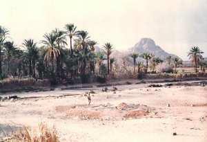 Tourisme à Ideles (Tamanrasset) : Un camping qui ne profite qu'aux démons du désert
