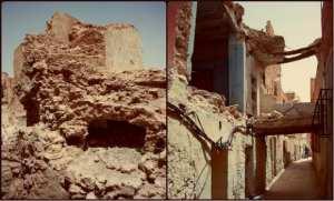 Ouargla: opération d'inventaire dans les régions d'Oued Mya et Oued-Righ