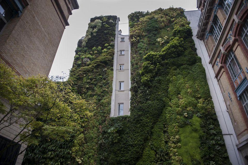 Planète (France) - Mettre la nature au cœur du développement urbain