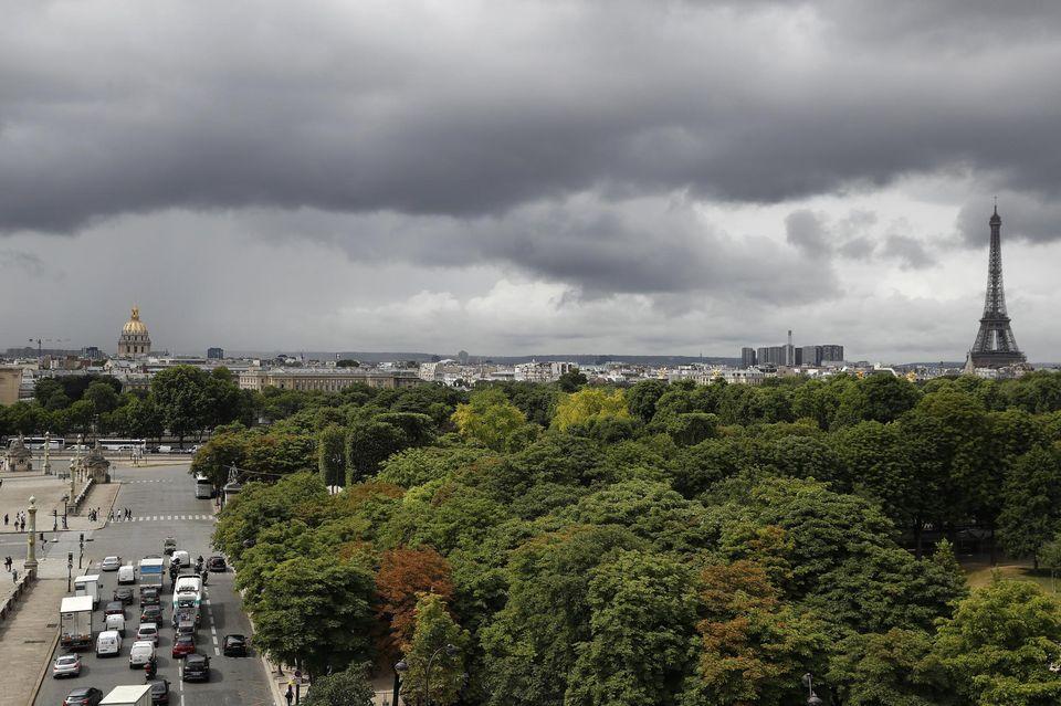 Planète (France) - Laurent Tillon: «Un petit parc peut abriter un nombre incroyable d'espèces»