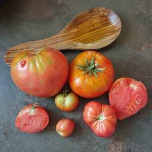 Les dix bienfaits de la tomate