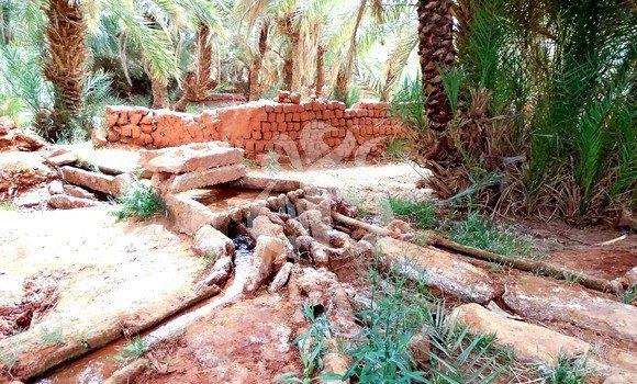 Adrar : sortie de la 1ère promotion d'agents d'entretien de foggaras