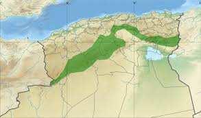 Algérie - Agriculture: vers la relance du Barrage Vert avec des capacités scientifiques