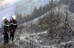 GOURAYA (TIPASA) - Les massifs montagneux ravagés par le feu