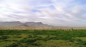 La forêt du Djebel Messaad et La Steppe
