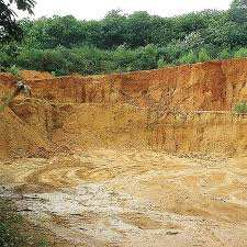 Une forêt transformée en carrière de sable à Mostaganem: Qui arrêtera le massacre '