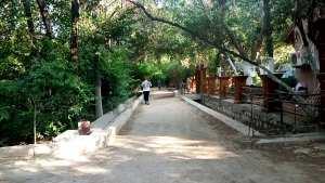 Biskra - Association Biskra la verte: Un appel pour préserver les jardins historiques