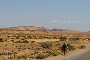 La steppe ou l'enfer du décor Livrée à la sécheresse et à la Mafia