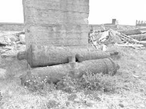 Patrimoine historique d'El Kala (El Tarf) : Des fûts de canons historiques oubliés