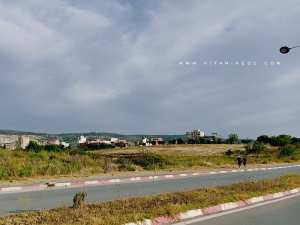 Dangereux? L'axe Imama - Gare routière devenu le lieu de sport privilégié pour les Tlemceniens