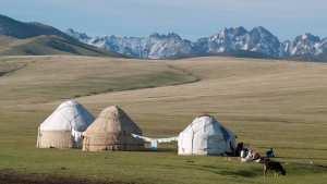 Planète - Asie: Au Kirghizistan, le bonheur est dans le pâturage d'été