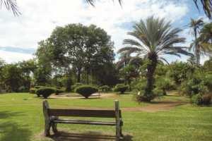 Aïn Témouchent - LE PROJET A ATTEINT UN TAUX DE RÉALISATION DE 72%: Un parc citadin pour les Témouchentois