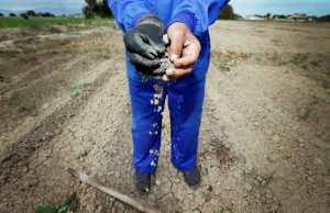 Bouira - Face à la sécheresse, les céréaliculteurs réclament leurs quotas d'eau d'irrigation