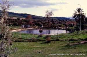 Piscine romaine (Hammam Berda)