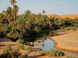 Algérie - L'ONAT organise des séjours au Sud à 15.000 dinars: L'expérience d'un voyage exceptionnel