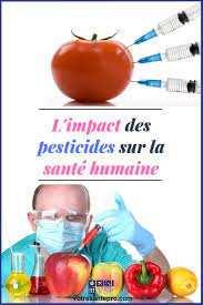 Algérie - Contribution: De l'usage intensif des pesticides, et leurs conséquences néfastes (Suite et fin)