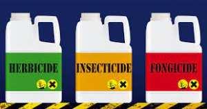 Algérie (Bouira) - L'utilisation excessive des pesticides mise à l'index