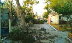 COMMUNE D'EL-KARIMIA (CHLEF) - Des espaces verts à l'abandon