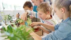 SIDI BEN ADDA (AÏN TÉMOUCHENT) - Lancement d'un projet pilote d'une école verte