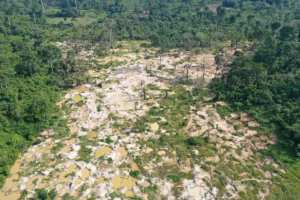 Planète (Afrique) - En Côte d'Ivoire, une «armée verte» lutte contre la déforestation