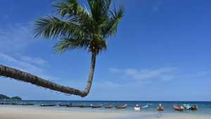 Planète (Asie) - La Thaïlande interdit les crèmes solaires nuisibles aux coraux