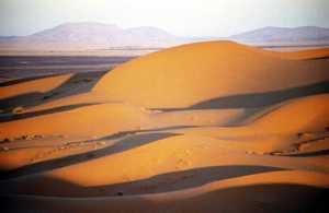 Le désert envahit la steppe à Naama