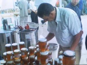 Saïda : De l'or pour l'apiculture algérienne Actu Ouest : les autres articles