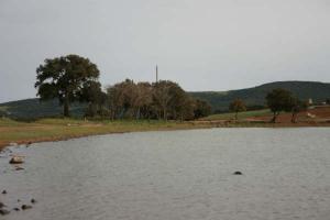 reserve d'eau a theniet el had en danger