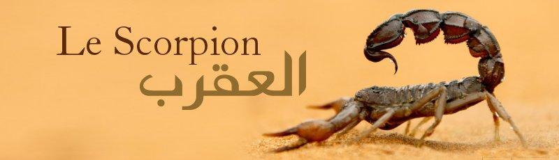 Tipaza - Piqure de Scorpion