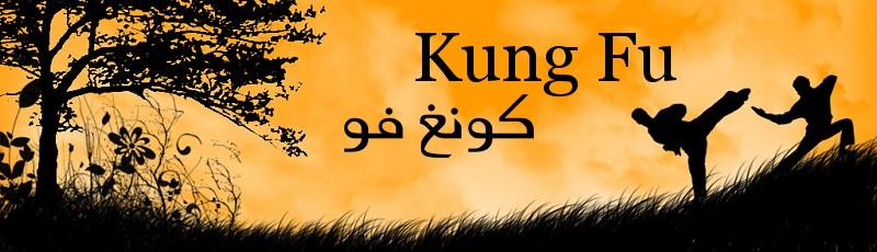 Toute l'Algérie - Kung Fu