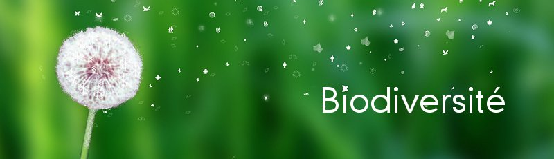 B.B.Arreridj - Biodiversité