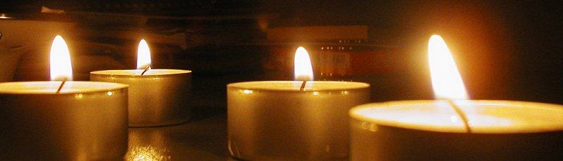 المسيلة - ONVT : Organisation nationale des victimes du terrorisme
