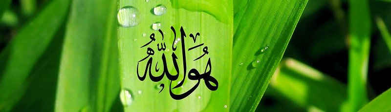 سعيدة - Conseils religieux