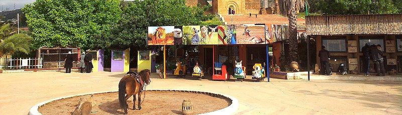 Tlemcen - Zoo Mansourah Tlemcen