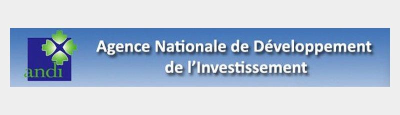 illizi - ANDI : Agence Nationale de Développement de l'Investissement