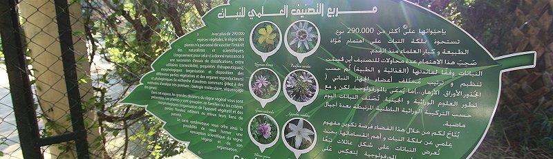 الجزائر العاصمة - Institut de formation de techniciens en agriculture, Ecole d'Horticulture, Hamma, Alger