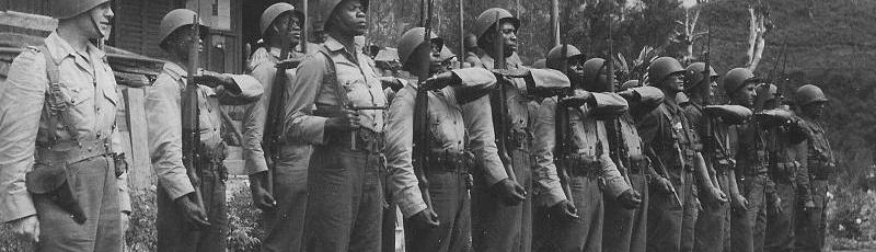 Médéa - Anciens combattants algeriens de la guerre d'Indochine