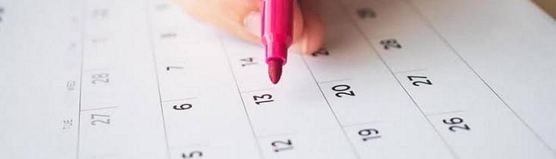 النعامة - Vacances scolaires, universitaires (calendrier)