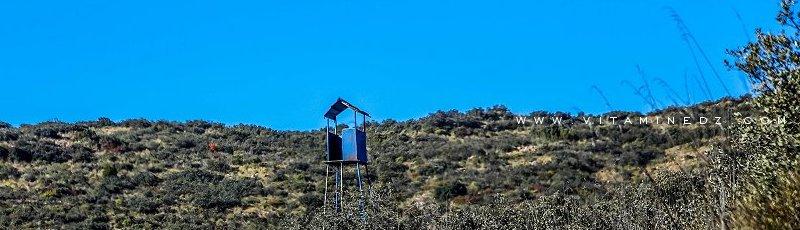 Tlemcen - Réserve de chasse de Moutas(Commune de Bouhlou, Wilaya de Tlemcen)