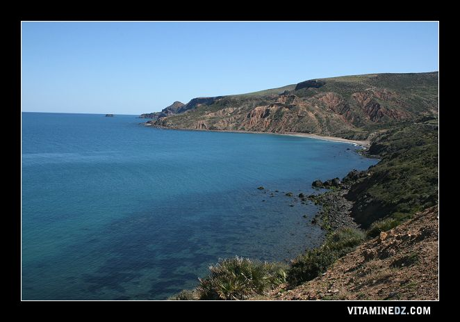 شواطئ وحمامات عين تموشنت 507-la-plage-de-malous-a-droite-de-ouardania