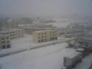 الثلوج تغطي مدينة تيسمسيلت