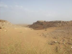 الصحراء بضواحي
