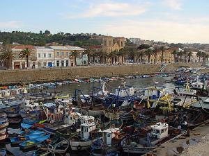 ميناء الصيد البحري لبلدية القالة