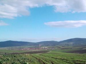 منظر من ضواحي بلدية شافية