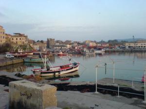 ميناء الصيد البحري لمدينة زموري 1
