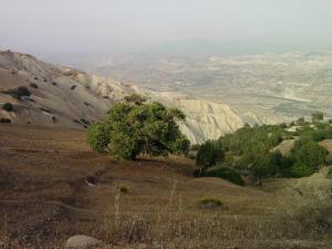 صورة من جبال عشعاشة