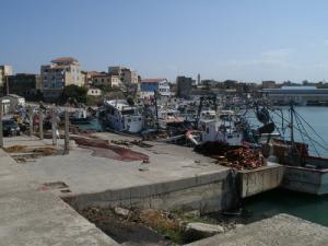 ميناء الصيد البحري بساحل زموري البحري