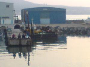 ميناء زموري بولاية بومرداس
