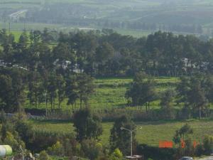 الحقول بضواحي بومرداس