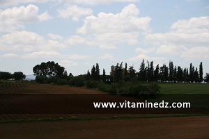 مزرعة من العهد الإستعماري بضواحي بن سكران